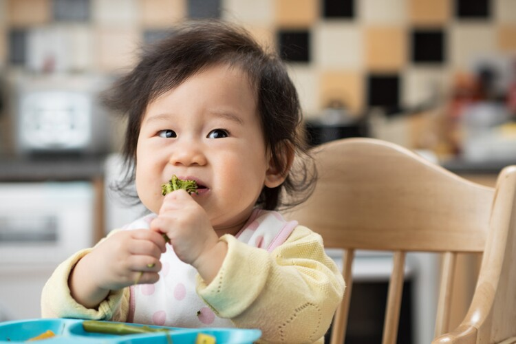 Scientific Opinion on nutrient requirements and dietary intakes of infants and young children in the European Union